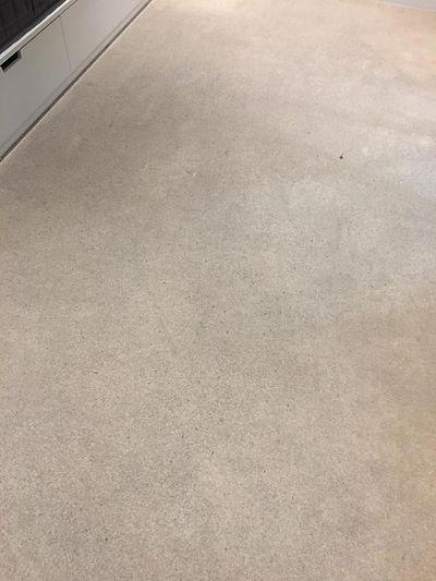 carpet deep clean - before 3.jpg