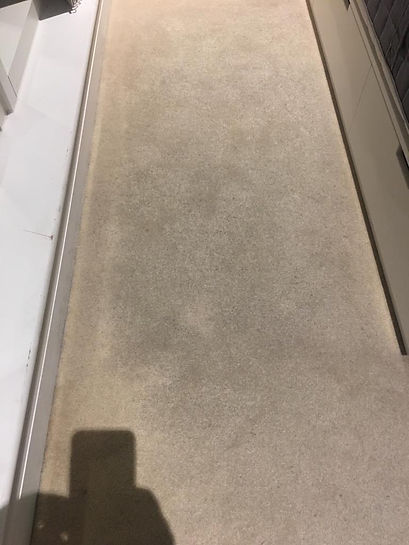 carpet deep clean- after 1.jpg