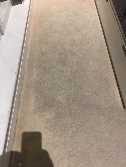 carpet deep clean- after 1.jpg