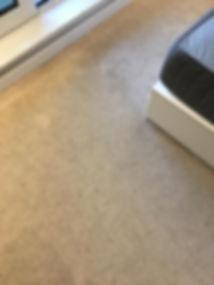 carpet deep clean - before 1.jpg