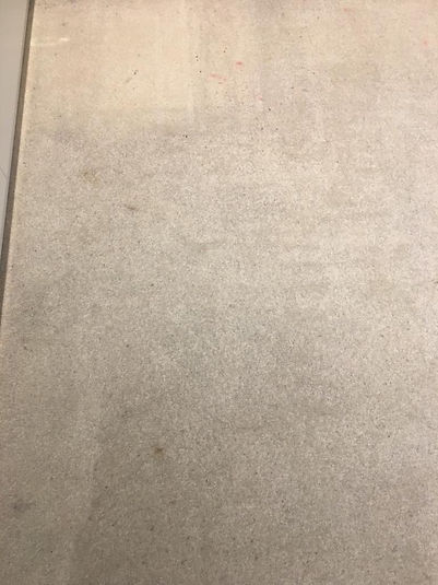 carpet deep clean - before 2.jpg