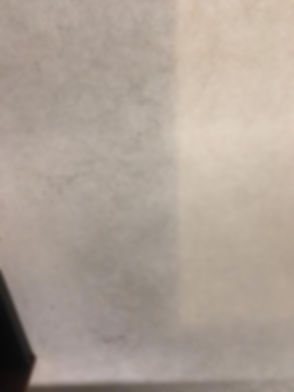 carpet deep clean - before 4_edited.jpg