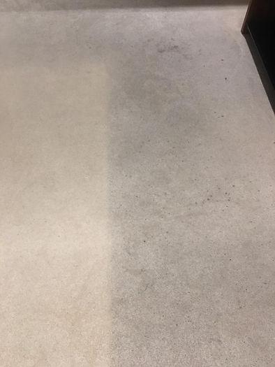 carpet deep clean - before 4.jpg