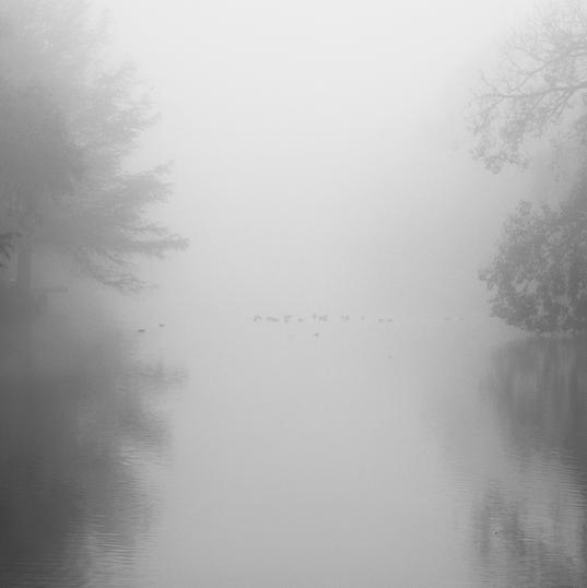 Las Nieblas