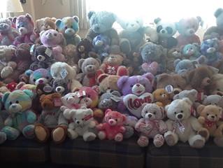 Teddy Bear Sunday update - THE BEAR FACTS!