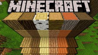 Top Five Wood in Minecraft