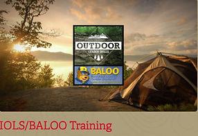 IOLS-Baloo Logo.JPG