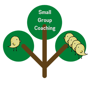 Small Group Coaching.png