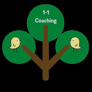 1-1 Coaching Tree.png