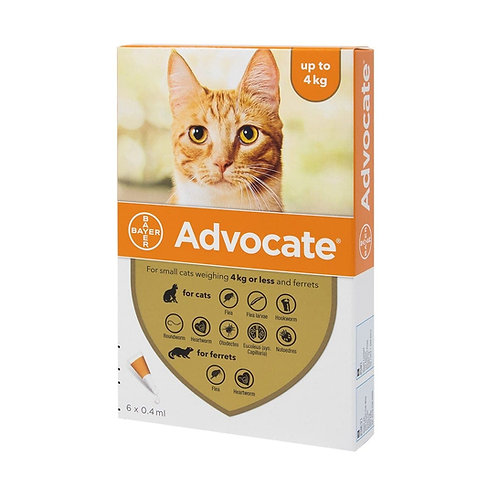 Advocate for cats