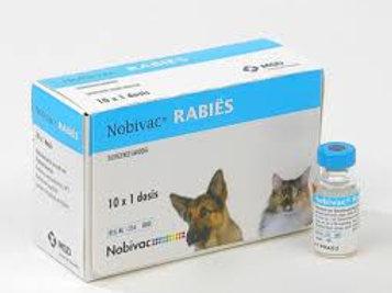 Novibac rabies