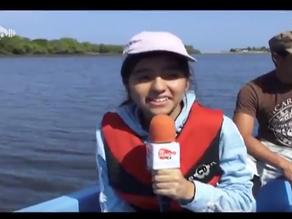 The Mangrove Ecosystem - De Humo TV
