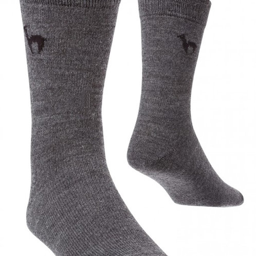 graue Business Socken, Vorderansicht