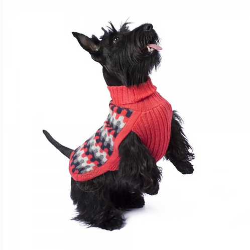 roter Hundepullover aus Alpakawolle, Ansicht Männchen