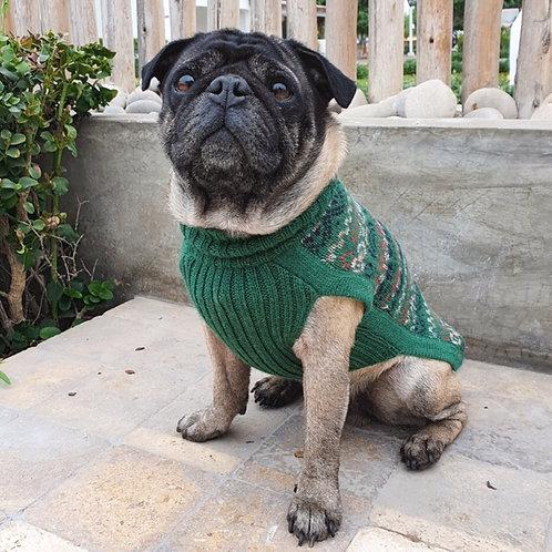 grüner Hundepullover, Vorderansicht