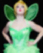 fairy tink 2440x377.jpg