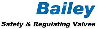 Safety & Regulating Valves