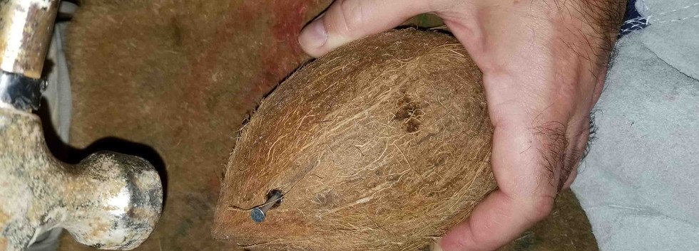 Coconut Cup Preperation