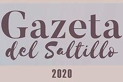 logo ams 2020.jpg