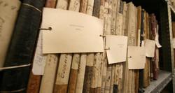Los archivos custodian decisiones