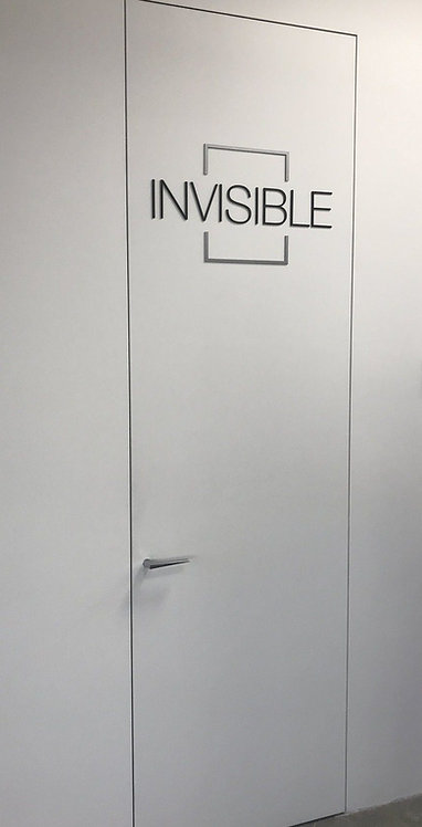 Дверной блок скрытого монтажа.