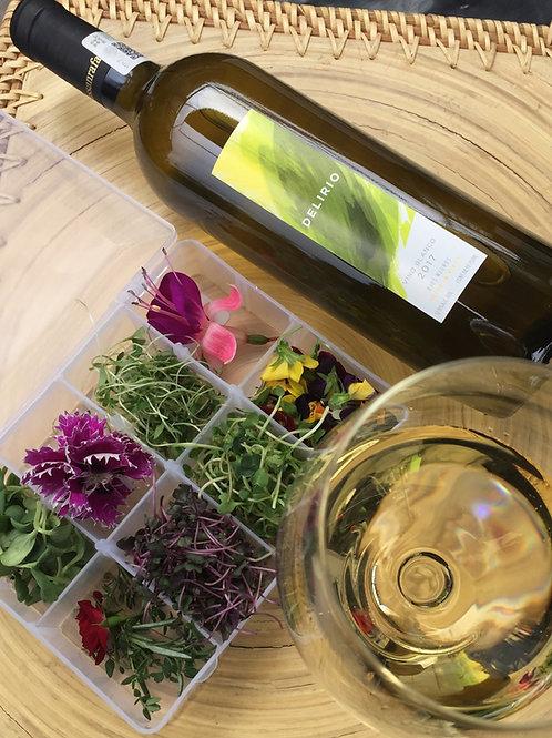 Cata de Flores, Brotes y Vino