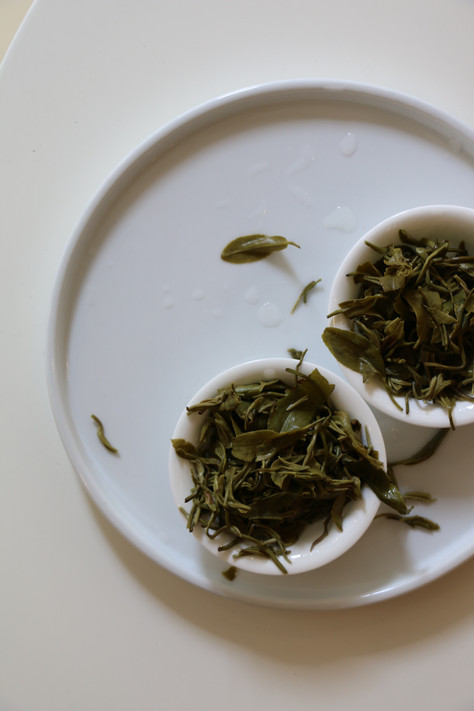Where does the taste of tea come from?