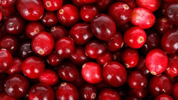 Milk Chocolate Cranberry Nut Fudge