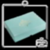 CX E-COMMERCE SOCUTE 24X34X8CM 6000-0069