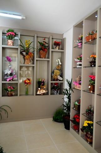 Loja - Floricultura