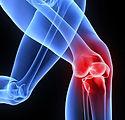 ortho-knee.jpg
