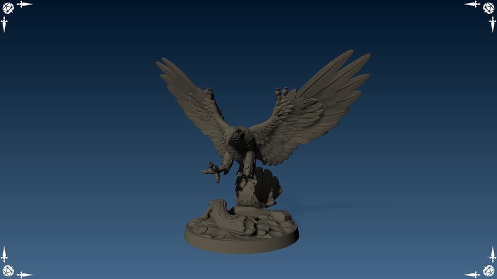Macha Falcon