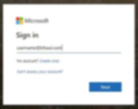Microsoft3.JPG