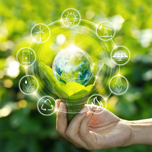 Facing Sustainability in a Global Perspective