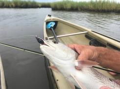 Fly Fishing Whitaker Spoon Fly.jpg
