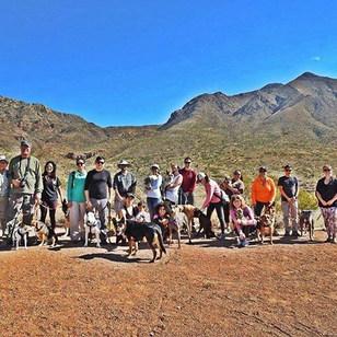 Yoga. Mountains. Dogs.jpg
