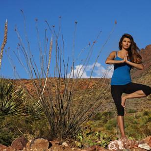 Yoga Pic 5.jpg