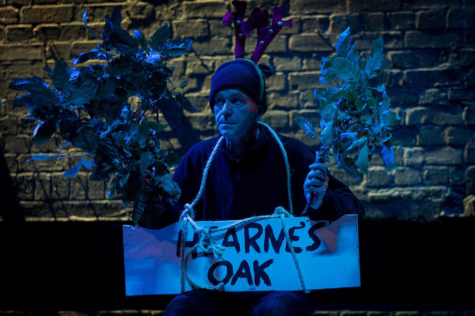 Hearne's oak.jpg