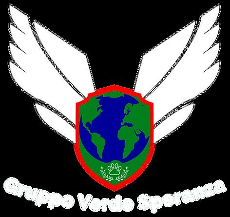 Logo GVS CON scritta COLORATO.png