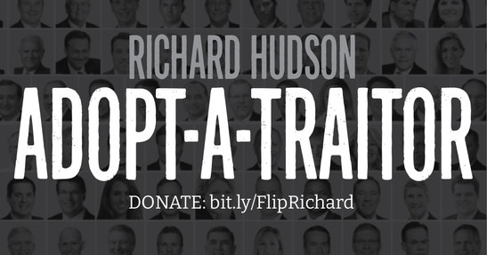Donate to flip Hudson's district.
