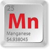 Manganese Test