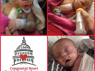 Congenital heart defects are common and deadly, yet research is grossly under-funded relative to the