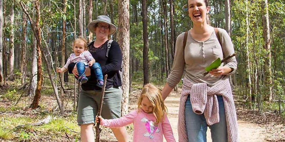Karawatha Forest discovery walk