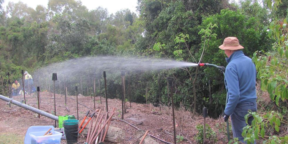 CreekCare: Planting along Pennywort Creek banks