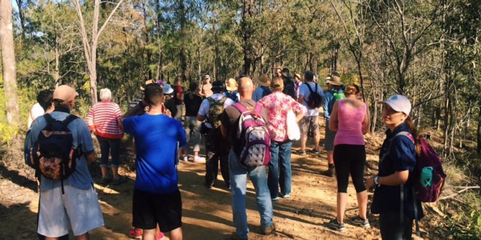 Karawatha Forest Guided Walk