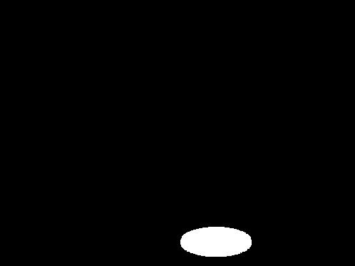 Lungenbraten (Filet) im Ganzen