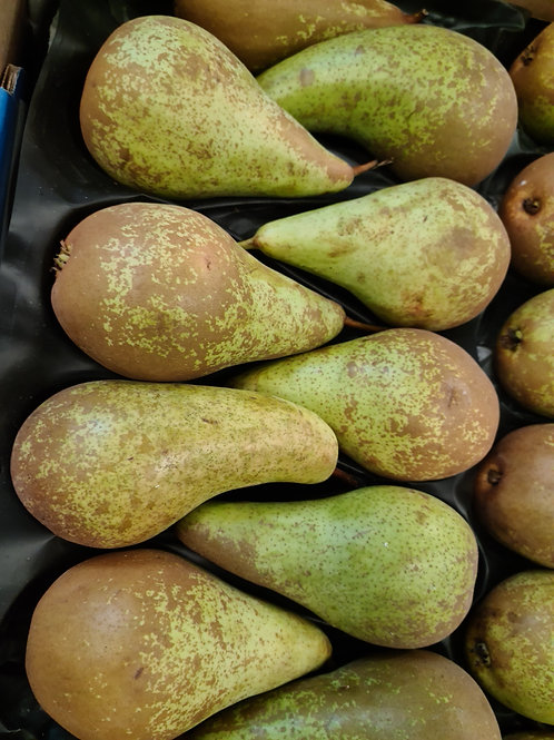 PEAR CONFERENCE 1 KG