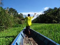 vamos a la selva