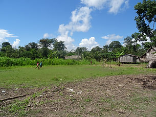 indigenous community of the Amzon
