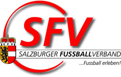 logo-sfv-mit